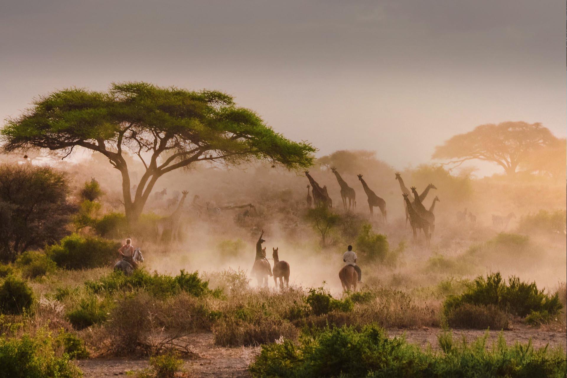 SAFARI A CABALLO POR ÁFRICA