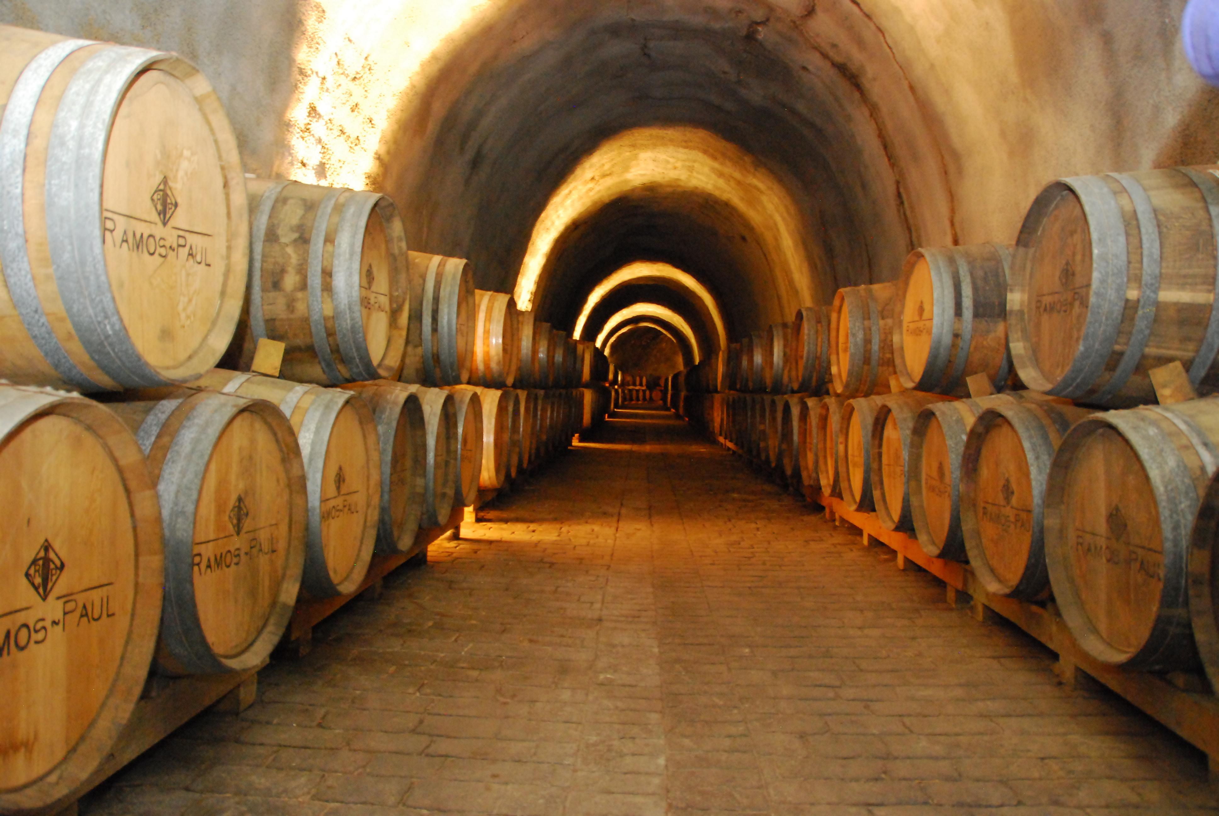Bodegas de vino en Málaga, visita guiada